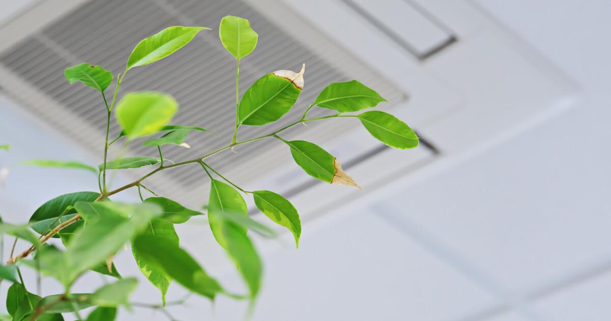 Monitorizar la calidad del aire interior: ¿por qué es importante?